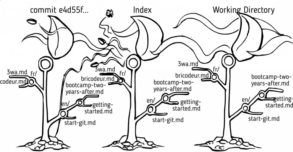 """La commande """"git commit"""" crée un nouvel arbre à partir de l'index."""